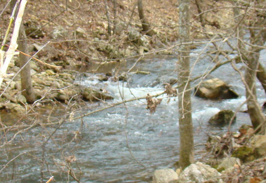 00 Dove Creek Road Mountain Grove, MO 65711 - Photo 44