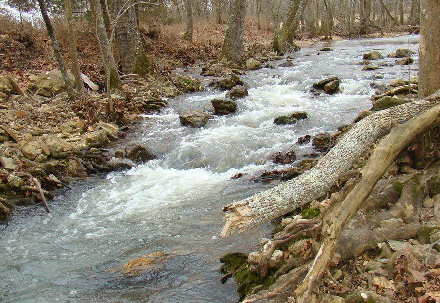 00 Dove Creek Road Mountain Grove, MO 65711 - Photo 49