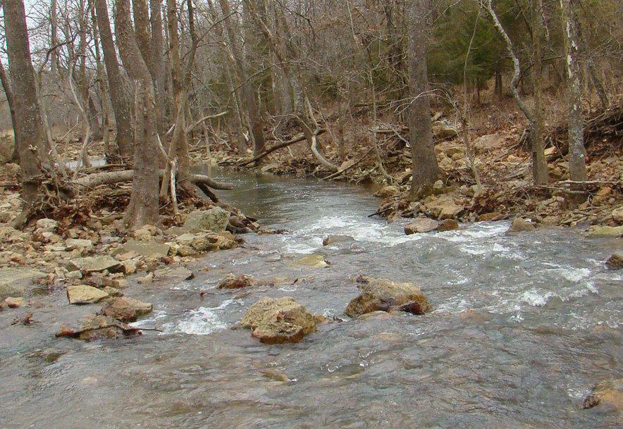 00 Dove Creek Road Mountain Grove, MO 65711 - Photo 50
