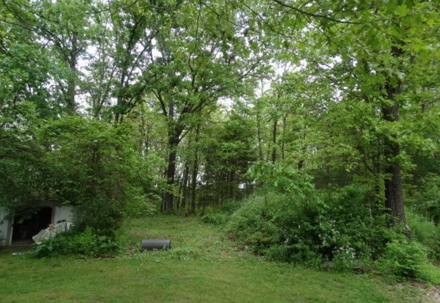 1097 Indian Grove Lane Rogersville, MO 65742 - Photo 6