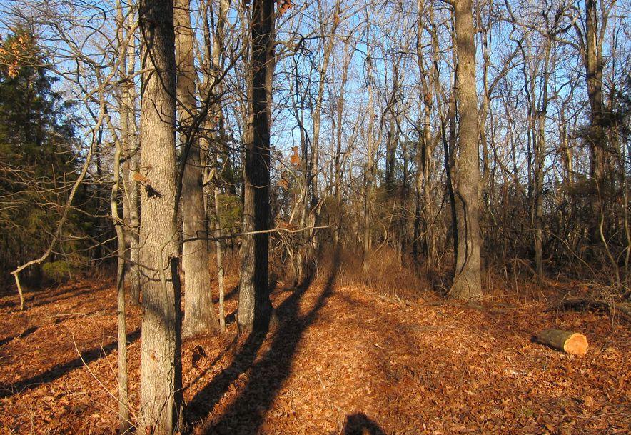 1097 Indian Grove Lane Rogersville, MO 65742 - Photo 60
