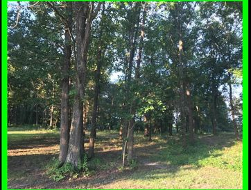 0 Forest Ridge Drive Bolivar, MO 65613 - Image 1