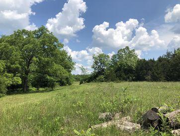 000 N Farm Road 173 Tract 1 And 2 Fair Grove, MO 65648 - Image 1