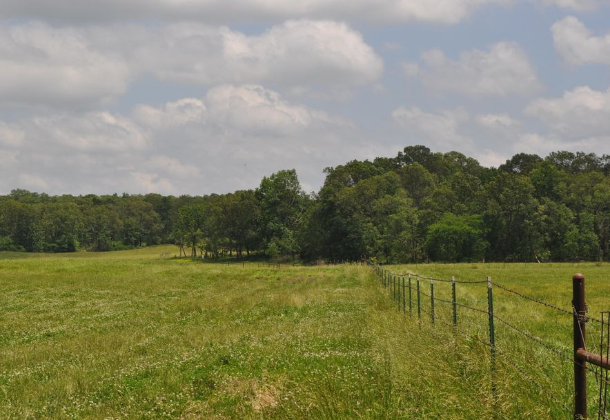 1788 County Road 1870 Willow Springs, MO 65793 - Photo 1