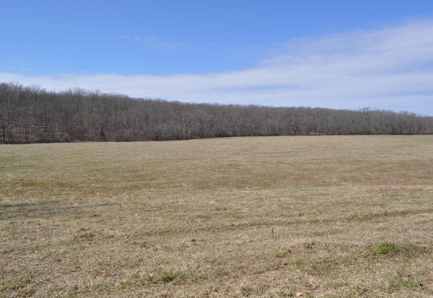 1788 County Road 1870 Willow Springs, MO 65793 - Photo 52