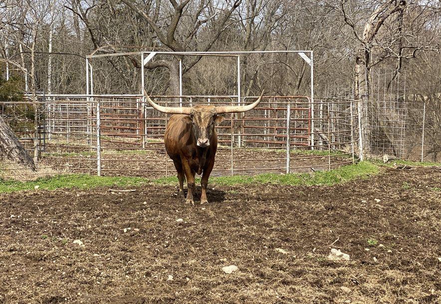 25200 Ranch Road Gentry, AR 72734 - Photo 16