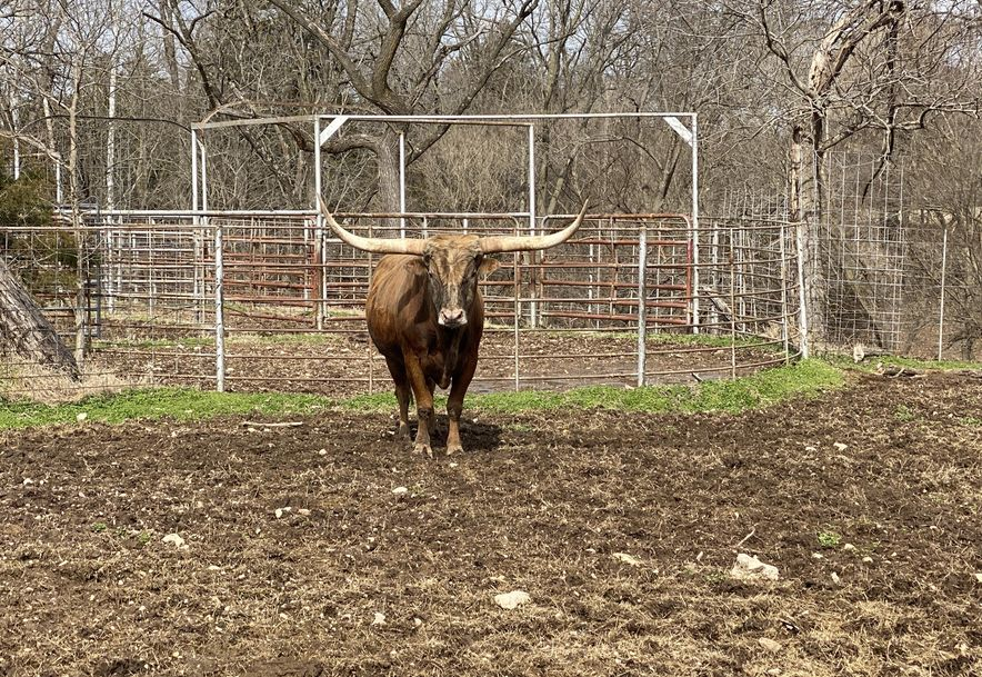 25200 Ranch Road Gentry, AR 72734 - Photo 45