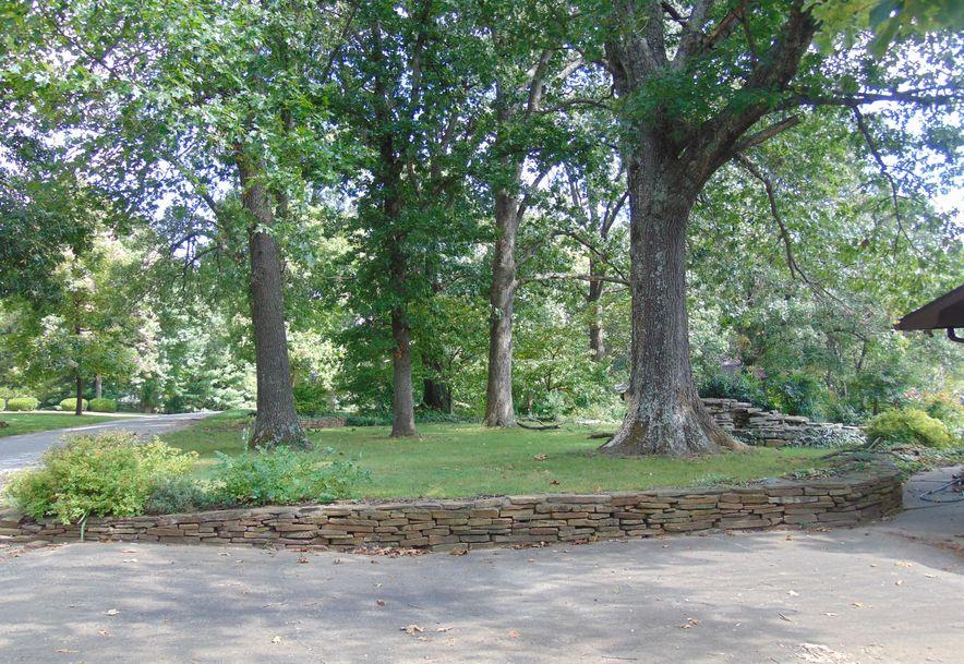 1001 Chinquapin Woods Cassville, MO 65625 - Photo 2