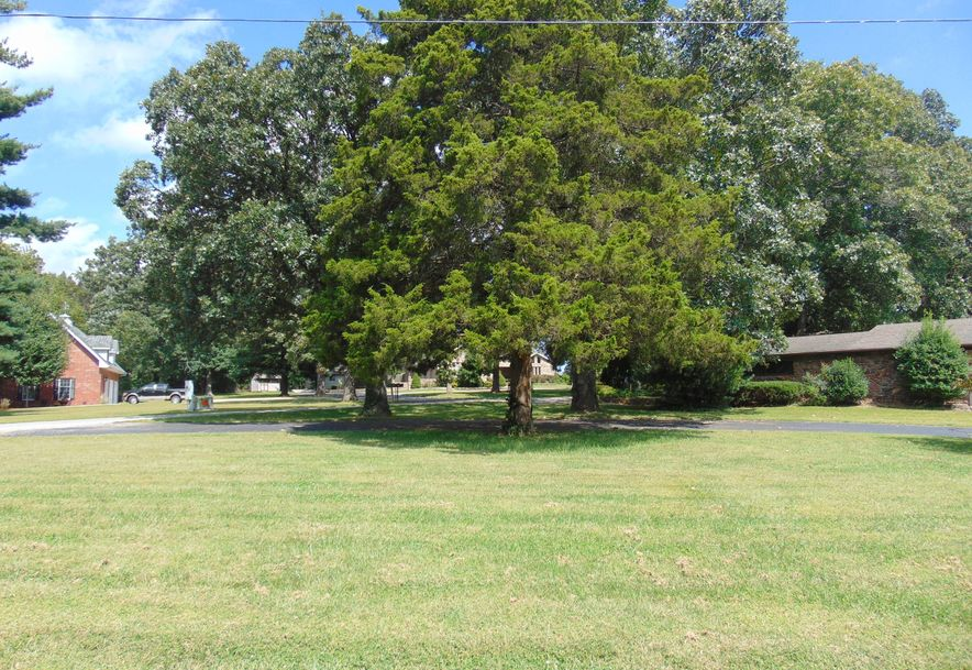 1001 Chinquapin Woods Cassville, MO 65625 - Photo 3