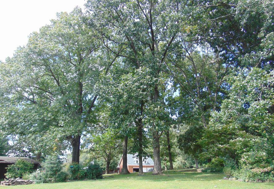 1001 Chinquapin Woods Cassville, MO 65625 - Photo 33