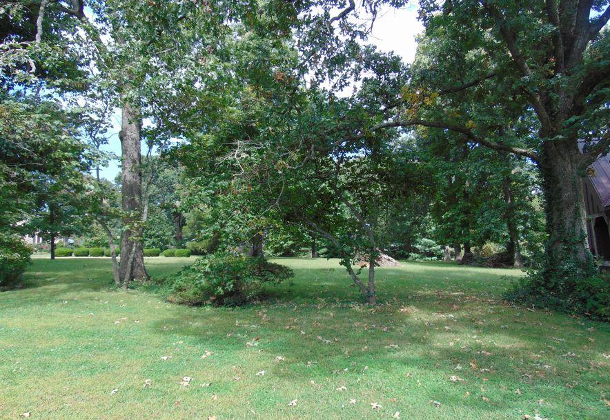 1001 Chinquapin Woods Cassville, MO 65625 - Photo 34