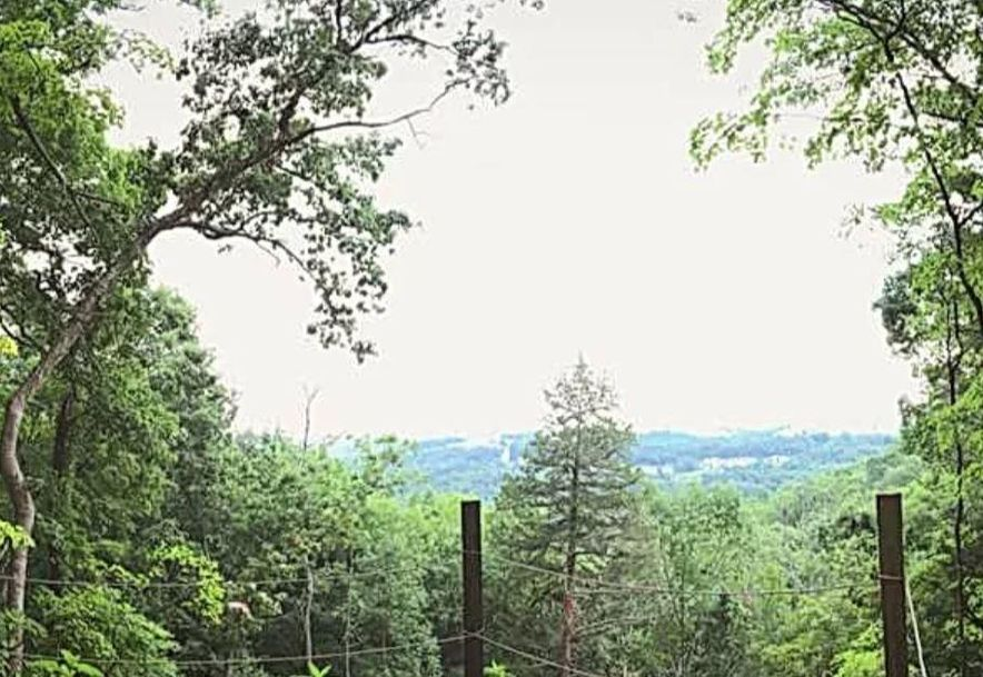 2362 State Hwy 265 Branson, MO 65616 - Photo 10