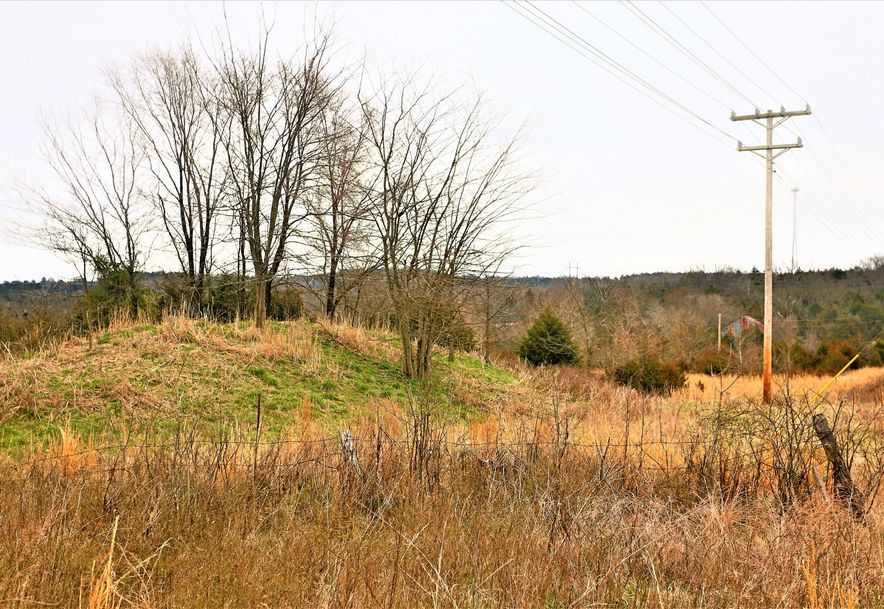 000 Coon Creek Road Hollister, MO 65672 - Photo 41