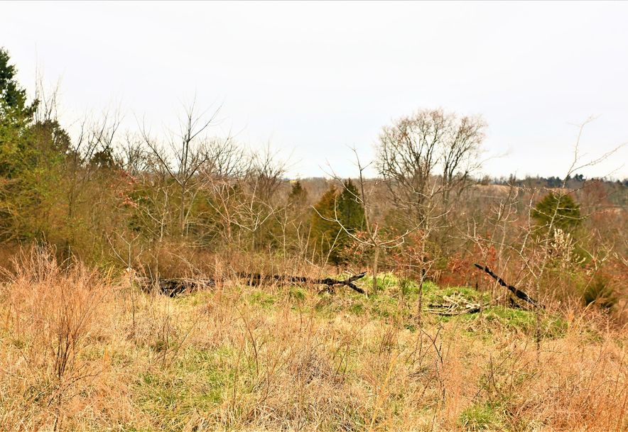 000 Coon Creek Road Hollister, MO 65672 - Photo 45
