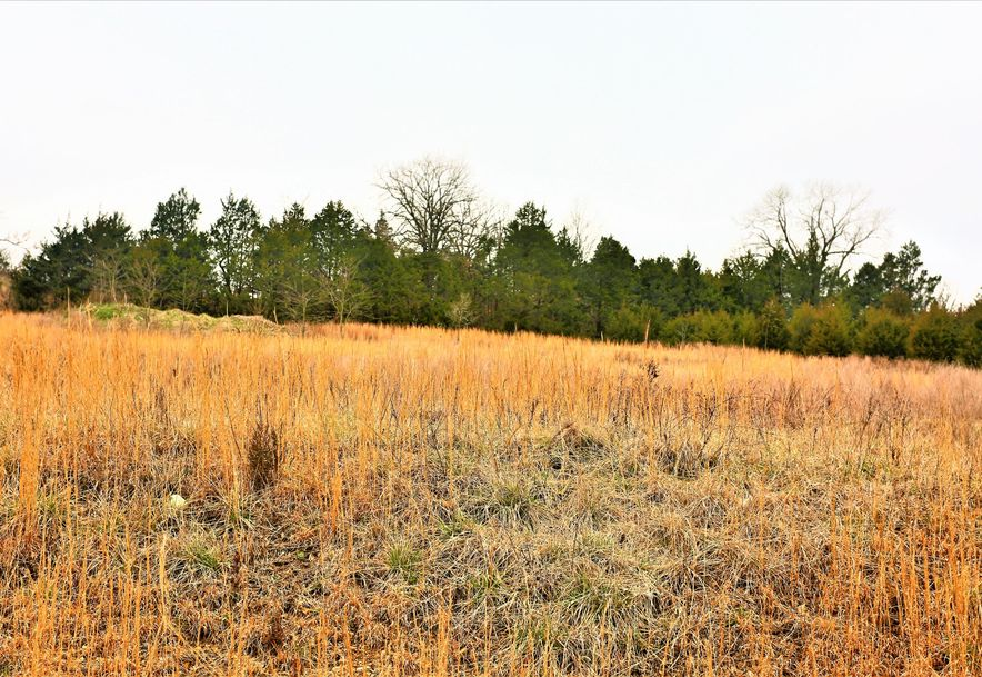 000 Coon Creek Road Hollister, MO 65672 - Photo 46