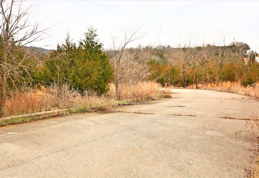 000 Coon Creek Road Hollister, MO 65672 - Photo 7