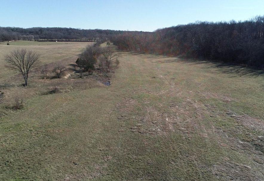 596 Little Creek Road Mountain Grove, MO 65711 - Photo 6