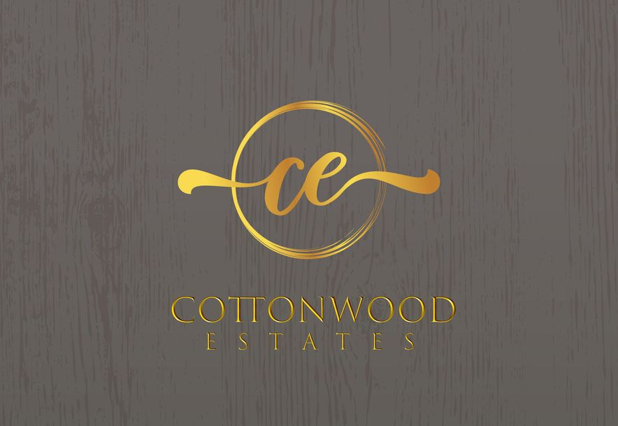 000 Cottonwood Circle Branson, MO 65616 - Photo 32