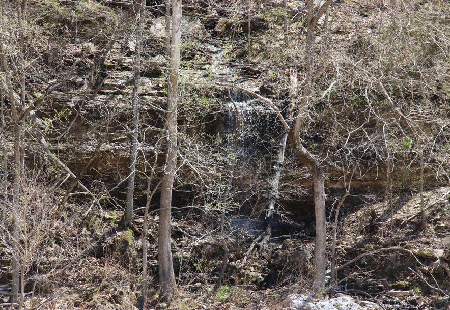 9331 State Highway 181 Zanoni, MO 65784 - Photo 29