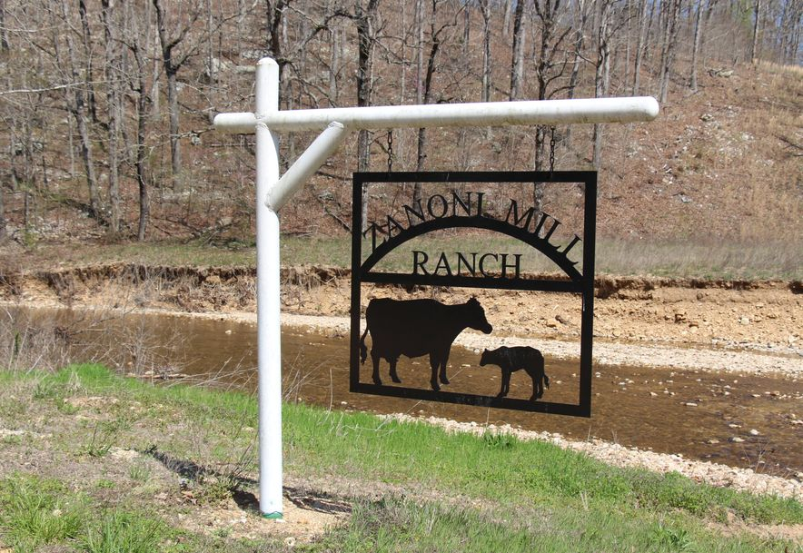 9331 State Highway 181 Zanoni, MO 65784 - Photo 4