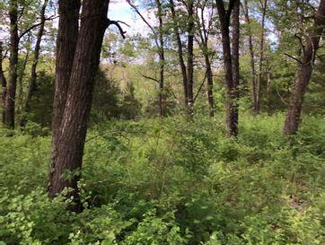 2293 East Fi Anna Lane Ozark, MO 65721 - Image 1
