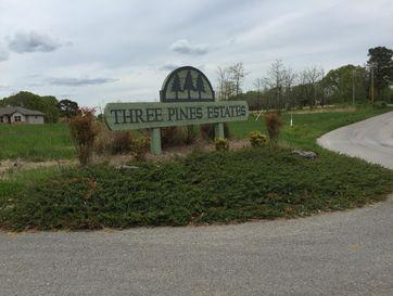 Lot 1 Three Pines Estates Reeds Spring, MO 65737 - Image 1