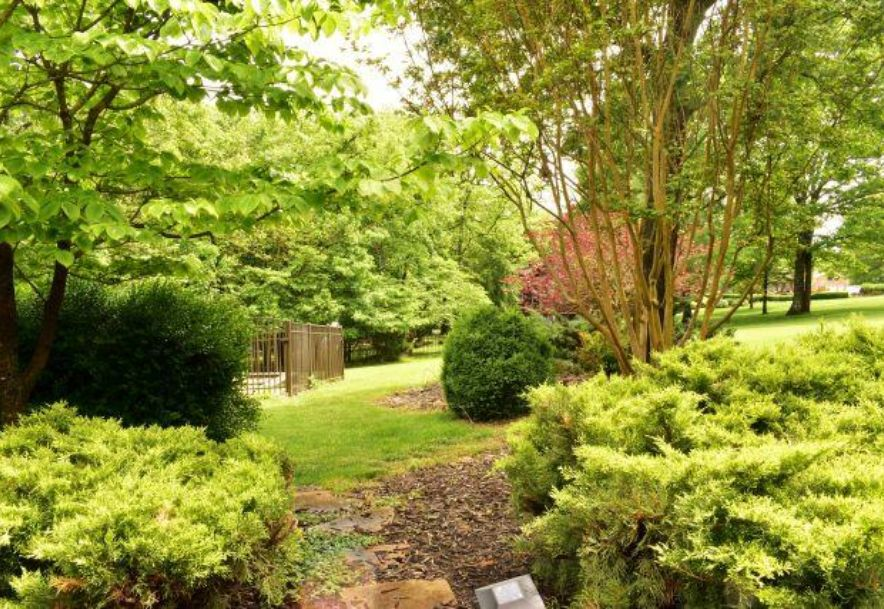 257 Meadow Lane Branson, MO 65616 - Photo 45
