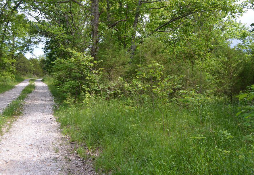 196 Temple Hill Drive Fordland, MO 65652 - Photo 2