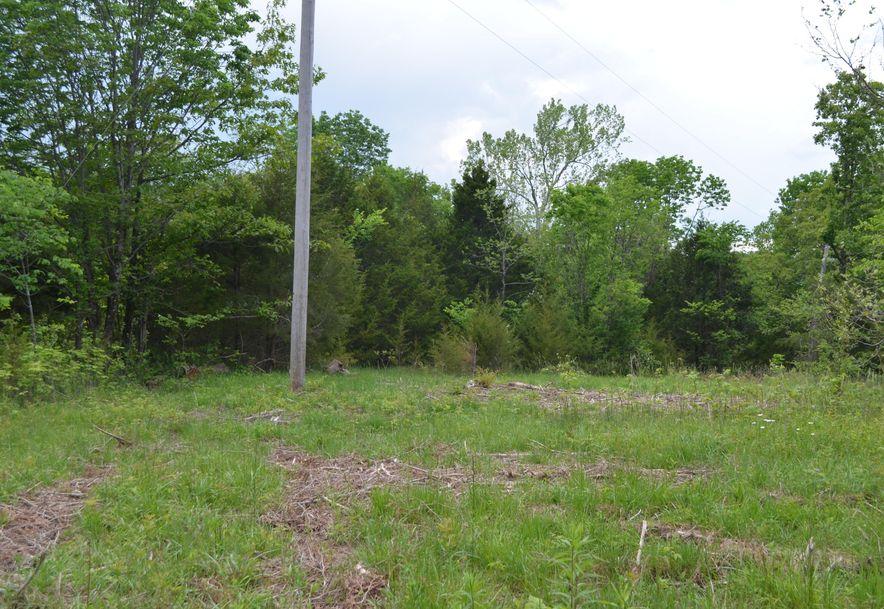 196 Temple Hill Drive Fordland, MO 65652 - Photo 5