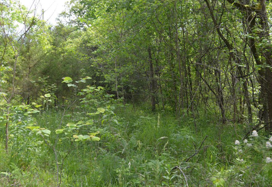 196 Temple Hill Drive Fordland, MO 65652 - Photo 6