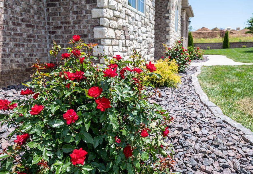 901 West Regello Drive Nixa, MO 65714 - Photo 69
