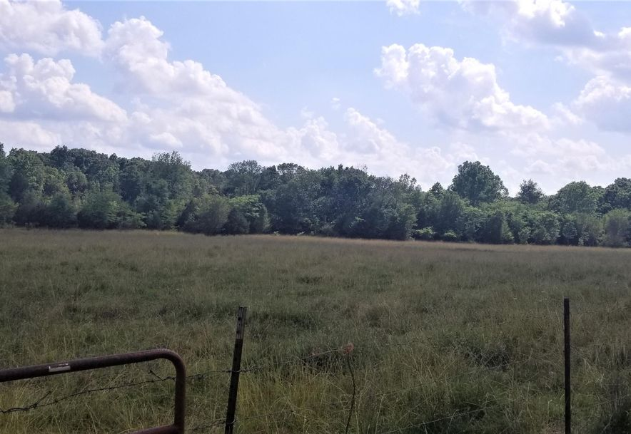 2211 County Road 6540 West Plains, MO 65775 - Photo 11
