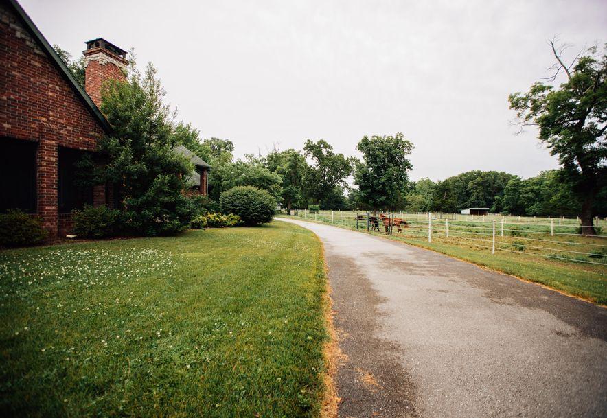 6050 East Palomino Lane Rogersville, MO 65742 - Photo 4