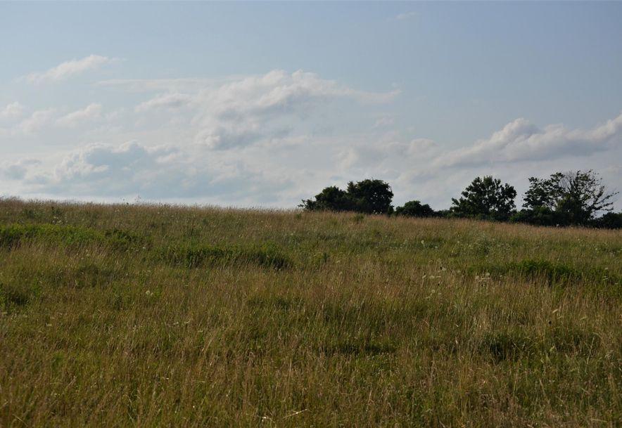 000 Cologna Road Marshfield, MO 65706 - Photo 4