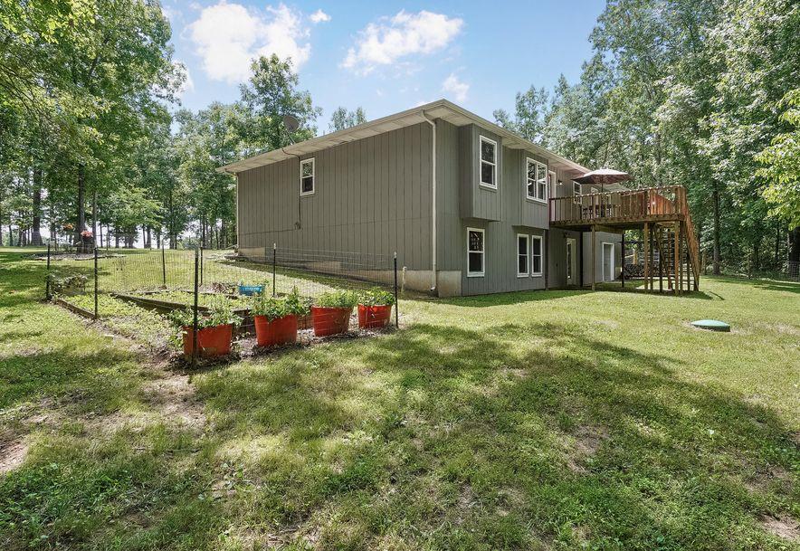 657 Chicory Road Rogersville, MO 65742 - Photo 33