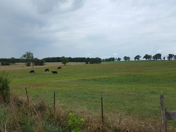 000 Dd Highway West Plains, MO 65775 - Image 1