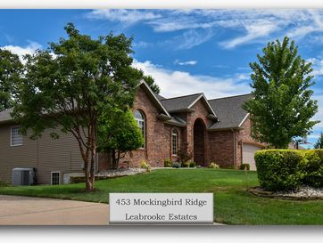453 Mockingbird Ridge Rogersville, MO 65742 - Image 1
