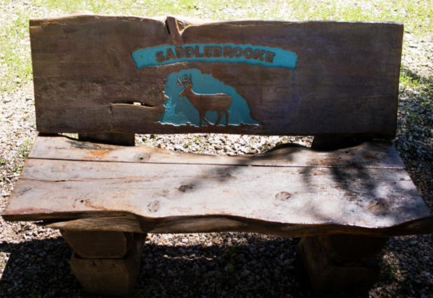 157 Ranch Road Saddlebrooke, MO 65630 - Photo 11