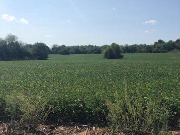 Photo of 82 Ac West Farm Rd 148
