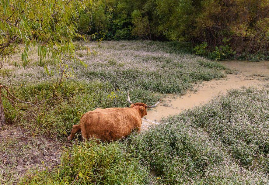 105 Alexas Xing Reeds Spring, MO 65737 - Photo 2