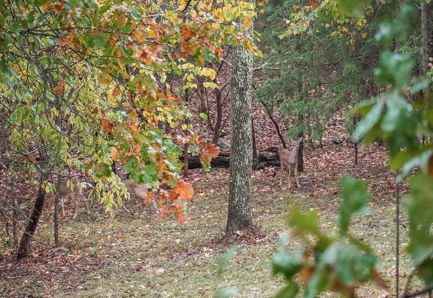 205 Whispery Lane Ozark, MO 65721 - Photo 83