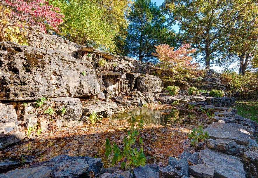 1564 South Turtle Creek Lane Rogersville, MO 65742 - Photo 46