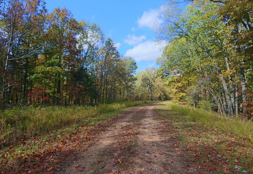 1857 State Highway Kk Galena, MO 65656 - Photo 11