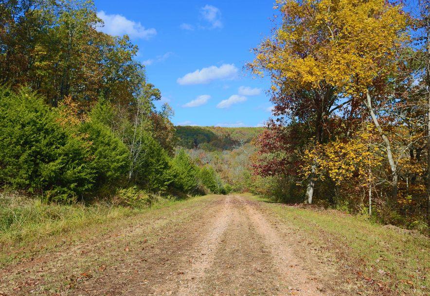 1857 State Highway Kk Galena, MO 65656 - Photo 16