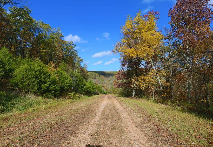 1857 State Highway Kk Galena, MO 65656 - Photo 17