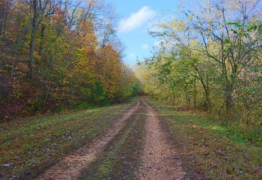 1857 State Highway Kk Galena, MO 65656 - Photo 18