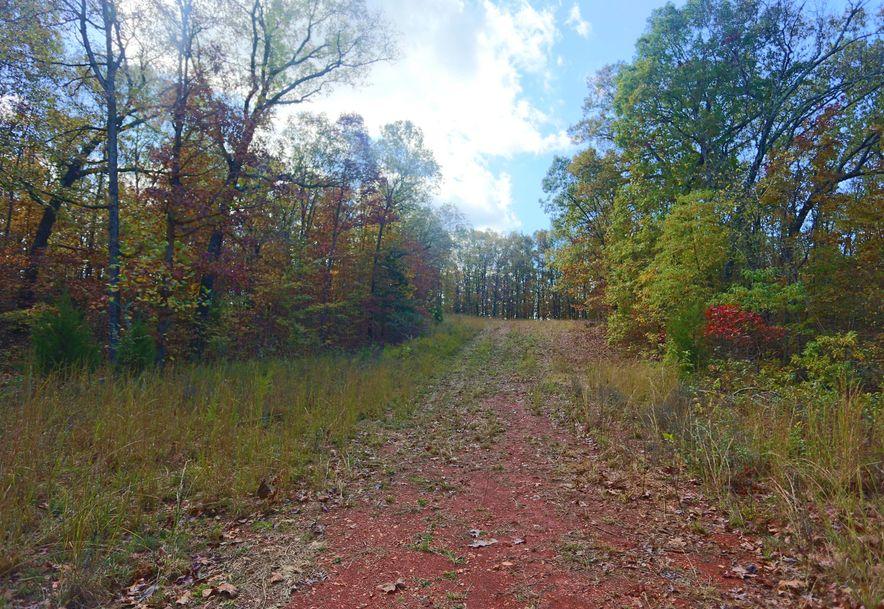 1857 State Highway Kk Galena, MO 65656 - Photo 28