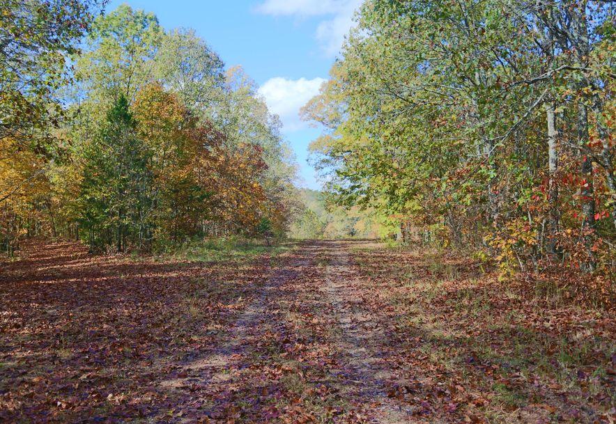 1857 State Highway Kk Galena, MO 65656 - Photo 31