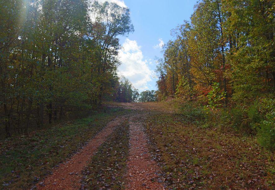 1857 State Highway Kk Galena, MO 65656 - Photo 36