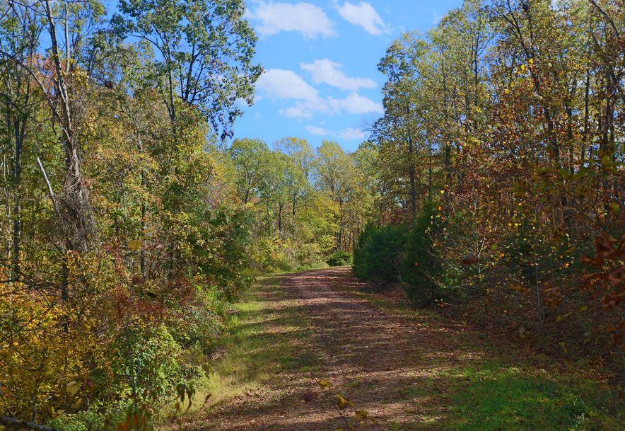 1857 State Highway Kk Galena, MO 65656 - Photo 53